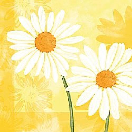 Ubrousek 33x33 3V Margarete Yellow 20ks | Duni - Ubrousky, kapsy na příbory - 3 vrstvé ubrousky