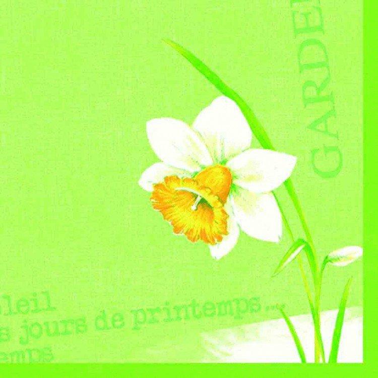Ubrousek 40x40 DNL Spring day 50ks | Duni - Ubrousky, kapsy na příbory - Dunilin 40x40