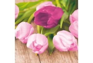 Ubrousek 33x33 3Vr Easter Tulip 20ks | Duni - Ubrousky, kapsy na příbory - 3 vrstvé ubrousky