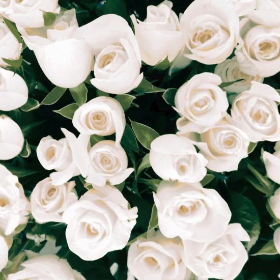 Ubrousek 33x33 3Vr Elegant Roses 20ks | Duni - Ubrousky, kapsy na příbory - 3 vrstvé ubrousky