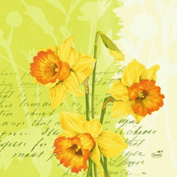 Ubrousek 40x40 DNL Spring Flowers 50ks | Duni - Ubrousky, kapsy na příbory - Dunilin 40x40