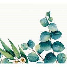 Ubrousek 40x40 Dsoft Eucalyptus 60ks | Duni - Ubrousky, kapsy na příbory - Airlaid 40x40