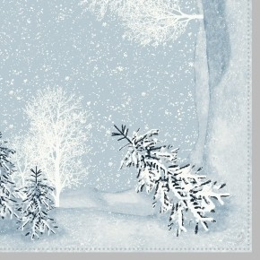 Ubrousek 40x40 Dsoft Winter Mornings 60k | Duni - Ubrousky, kapsy na příbory - Airlaid 40x40